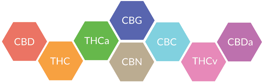 what are cannabinoids learn more cbd oil review