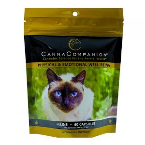 Canna Companion Review