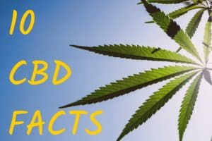 "marijuana leaf with ""10 CBD Facts"" written next to it"