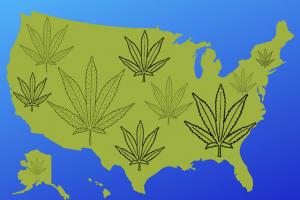 United States map with marijuana leaves adorning it