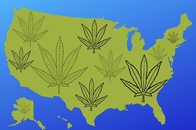 United States map with marijuana leaves adorning it