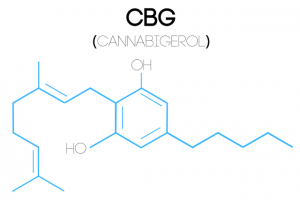 An illustration of a Cannabigerol (CBG) molecular structure