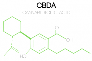 an illustration of CBDA's (cannabidiolic acid) molecular structure