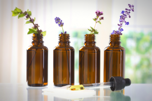 CBD Oil bottles filled with oil with essential oil-producing plant stems placed in them