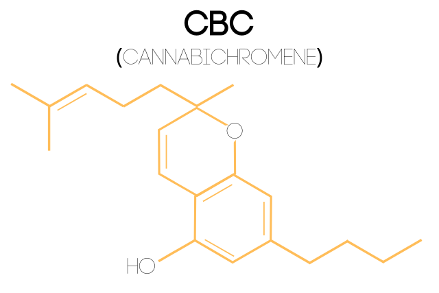 An illustration of the Cannabichromene (CBC) molecular structure