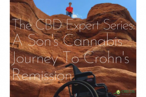 Header image for CBD expert series interview with Wendy Turner