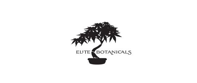 Elite Botanicals Review