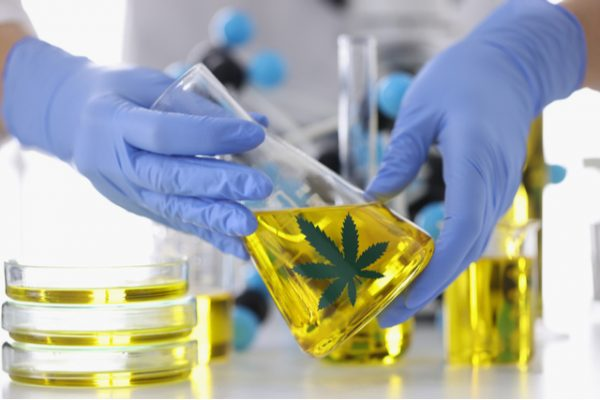 Potential Contaminants in CBD Oil: What You Need to Know