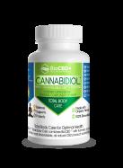 BioCBD Plus Total Body Care Capsules (300mg)